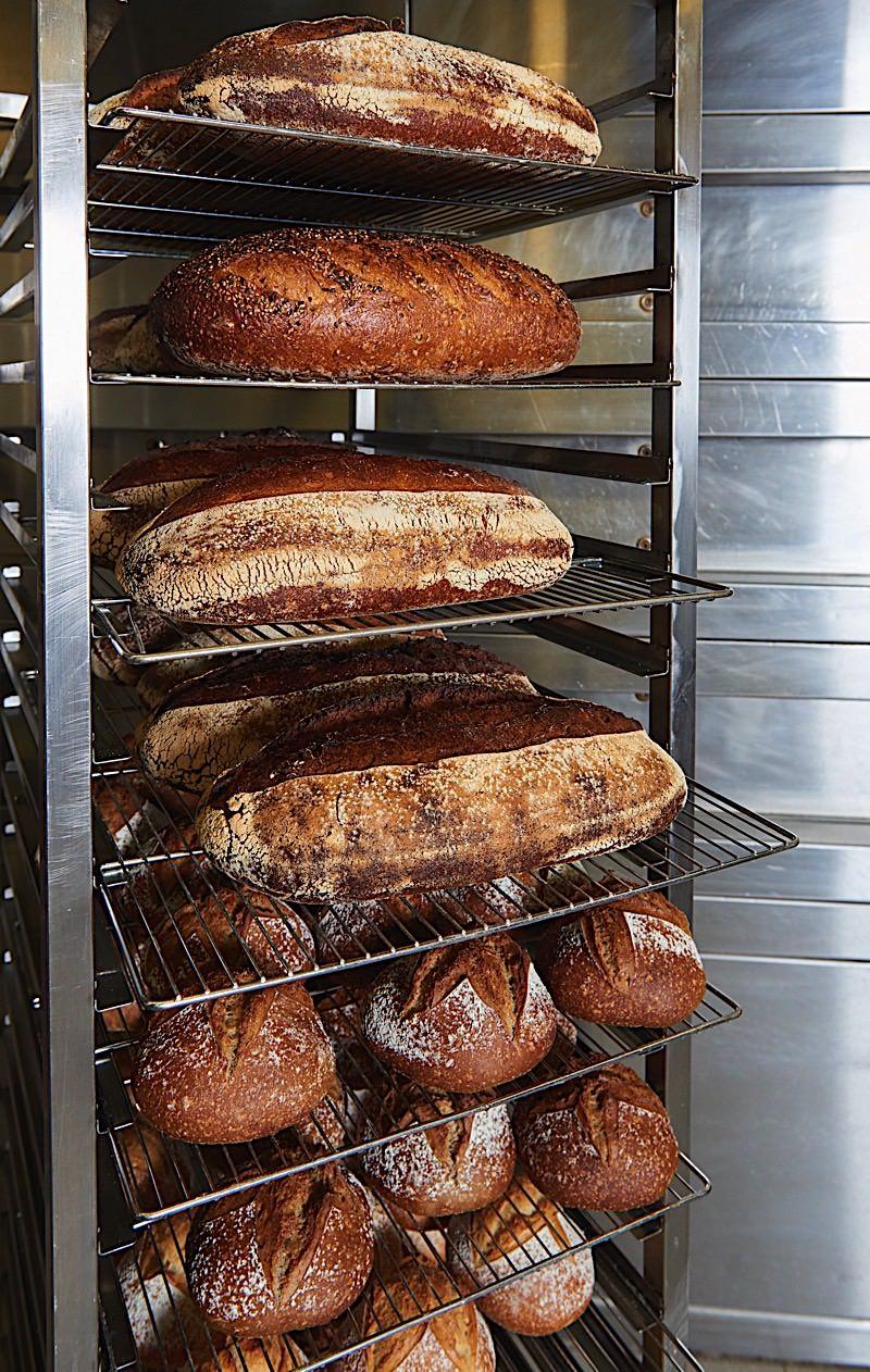 Broodproductie 13